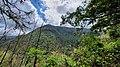 Floresta Laurissilva, Ribeiro Frio.jpg