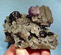 Fluorite-Sphalerite-Quartz-239915.jpg