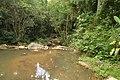 Fluss auf einem Ausflug in Garopaba 6 (22103657502).jpg