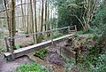 Footbridge across a stream, Chase Wood - geograph.org.uk - 1272497.jpg