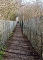 Footpath across wasteland, Cherry Hinton - geograph.org.uk - 718298.jpg