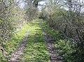 Footpath to Brook Lane - geograph.org.uk - 983713.jpg