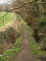 Footpath to Shoscombe - geograph.org.uk - 1187310.jpg