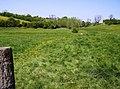 Footpath towards Luckington - geograph.org.uk - 488877.jpg