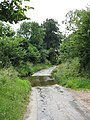 Ford Through Wellington Brook - geograph.org.uk - 1377115.jpg