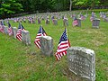 Forest Dale Cemetery Civil War Veterans.jpg