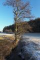 Fulda Giesel Istergiesel Stream.png