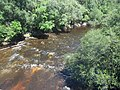 GA US 221 Withlacoochee River north02.jpg