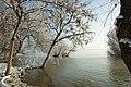 Galati Danube bank - Malul Dunarii la Galati - panoramio.jpg