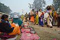 Gangasagar Fair Transit Camp - Kolkata 2013-01-12 2531.JPG