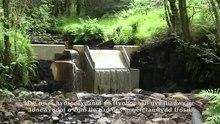 File:Garwnant Hydropower Scheme, Breckon Beacons, Cymru, (Wales).webm
