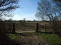 Gate opening on to Hyles Moor - geograph.org.uk - 164809.jpg