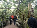 General view - Copenhagen Zoo - DSC09068.JPG