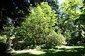 General view - UBC Botanical Garden - Vancouver, Canada - DSC07759.jpg