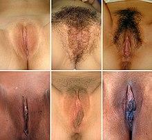Γυναίκες με μεγάλο μουνί τρύπα