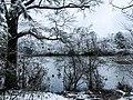 Georgia snow IMG 4529 (38946767731).jpg
