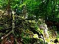 Germany - Kirschweiler, Naturschutzgebiet Silberich – Kirschweiler Festung - panoramio.jpg