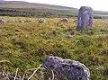 Glenquicken Stone Circle - geograph.org.uk - 1420123.jpg