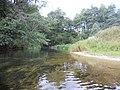 Gmina Borne Sulinowo, Poland - panoramio (4).jpg