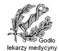 Godło lekarzy medycyny.png