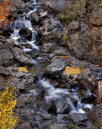 Ouray County, Colorado - Fall colors on Bear Creek, south of Ouray