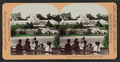 Golden Gate Park, San Francisco, Cal, from Robert N. Dennis collection of stereoscopic views.png