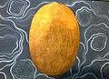 Golden cosmic egg Hiranyagarbha by Manaku.jpg