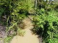 Gouyne (affl Dordogne) Prigonrieux rue S Allende amont.JPG