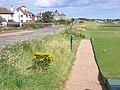 Grange Road - geograph.org.uk - 529173.jpg