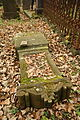 Gravestones at Jewish Cemetery in Dřevíkov, Chrudim District 50.JPG