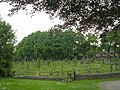 Graveyard - All Hallowes - Huddersfield Road - geograph.org.uk - 1896248.jpg