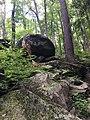 Great Smoky Mountains boulder.jpg