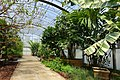 Greenhouse - Fruit and Spice Park - Homestead, Florida - DSC09077.jpg