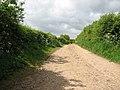 Gressenhall Farm - farm track - geograph.org.uk - 1309725.jpg