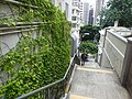 HK 上環 Sheung Wan 磅巷 Pound Lane Government Quarters n wall plants Aug 2016 DSC.jpg