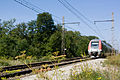 Halte Fontainebleau - Forêt IMG 8554.jpg