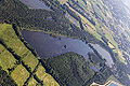 Haltern am See, Vogelvenn-Teich -- 2014 -- 9041.jpg