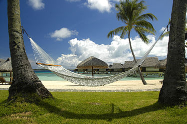 https://upload.wikimedia.org/wikipedia/commons/thumb/e/e6/Hammock_-_Polynesia.jpg/375px-Hammock_-_Polynesia.jpg