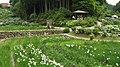 Hananosato-Takidani Japanese Iris Garden04.jpg