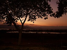 Haon-home-sunset-trees-sea.jpg