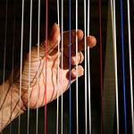 Harpist hands img 4997-b.jpg
