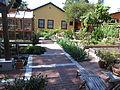 Hausgarten in Berkeley.JPG