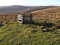 Head of Canker Cleugh - geograph.org.uk - 1088612.jpg