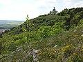 Heiliger Berg Mikulov sl6.jpg