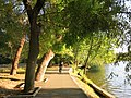 Herăstrău, municipiul București, Parcul Herăstrău 01.JPG