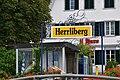 Herrliberg - Zürichsee 2010-08-06 15-10-32.JPG