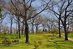 High Park, Toronto DSC 0230 (17393260671).jpg