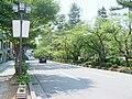 Hirosaka Street.jpg