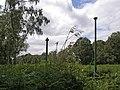 Holme Fen, Cambridgeshire (48092286243).jpg