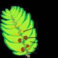 Hop-cone-v03.png